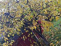 images/galeria/2020/Dzien_Krajobrazu/800_Drzewo_w_krajobrazie_04.jpg