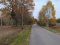 images/galeria/2020/Dzien_Krajobrazu/800_Drzewo_w_krajobrazie_17.jpg