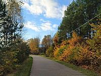 images/galeria/2020/Dzien_Krajobrazu/800_Drzewo_w_krajobrazie_18.jpg